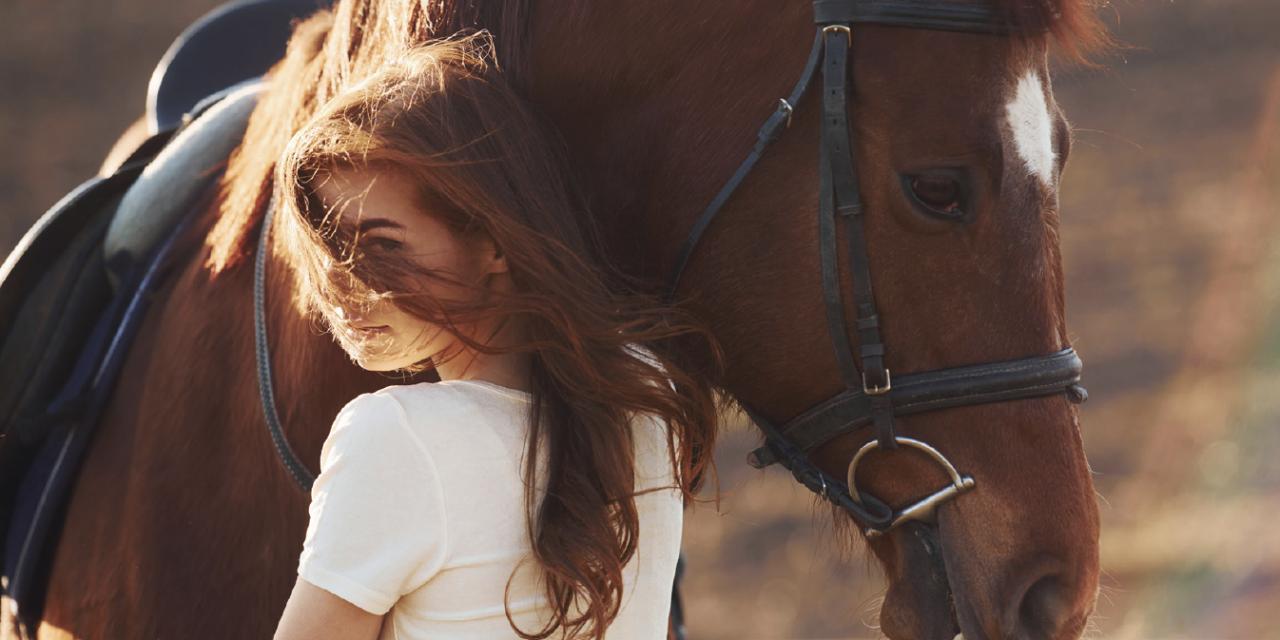 Het paard als brug naar emotie